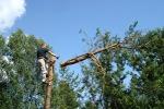 Альпинисты – деревянных дел мастера